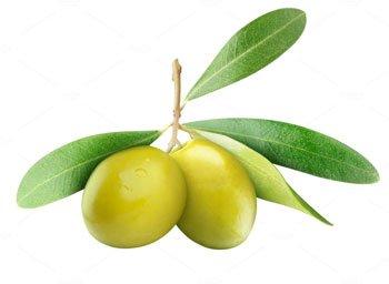 Olio Extra Vergine di Oliva - L'oliva