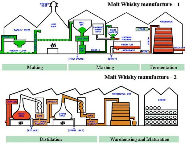 Miglior Whisky processo produttivo