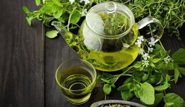Migliore-tè-verde